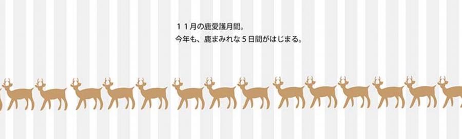 narashika_top